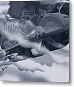 Two-tailed Tomcat Metal Print