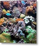 Underwater View Metal Print