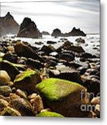 Ursa Beach Metal Print