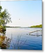 View Of The Dniper River At Morning Metal Print