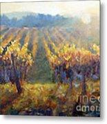 Vineyard Sunset Metal Print
