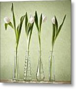 Waiting For Spring Metal Print