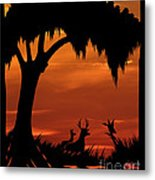 Wetland Wildlife - Sunset Sky Metal Print