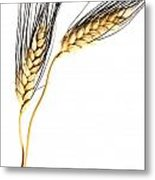 Wheat On White Metal Print