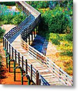 Winding Path In Blue Bloom Metal Print