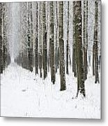 Winter Alley Metal Print