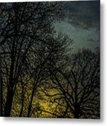 Winter Solstice Sunrise Metal Print