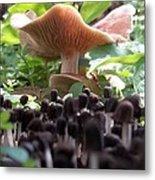 World Of Mushroom Metal Print