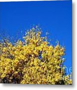 Yellow Autumn Tree Metal Print