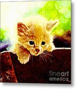 Yellow Kitten Metal Print