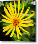 Yellow There Metal Print