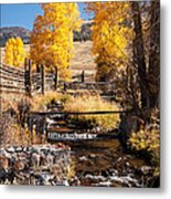 Yellowstone Institute In Lamar Valley In Yellowstone National Park Metal Print