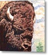 Young Bull At Yellowstone Metal Print