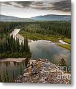 Yukon Canada Taiga Wilderness And Mcquesten River Metal Print