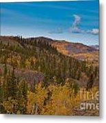 Yukon Gold - Fall In Yukon Territory Canada Metal Print