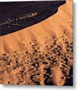 Africa, Namibia, Namib-naukluft Park Metal Print