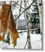 The Keweenaw's Message- Will You Listen? Metal Print