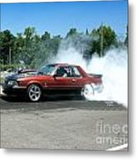 2003 07-06-14 Esta Safety Park Metal Print