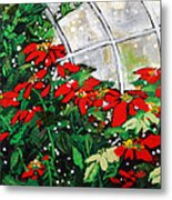 2013 010 Poinsettias And Dots Conservatory At The Us Botanic Garden Washington Dc Metal Print