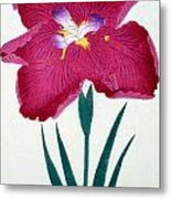 Japanese Flower Metal Print