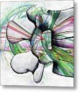 Lumbar Spine Metal Print