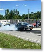 2228 07-06-14 Esta Safety Park Metal Print