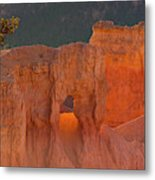Usa, Utah, Bryce Canyon National Park Metal Print
