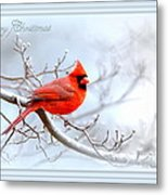 2559-1 Cardinal Metal Print