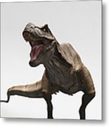 Dinosaur Tyrannosaurus Metal Print