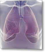 The Respiratory System Metal Print
