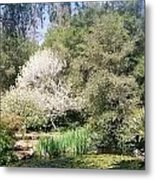 A Day In The Garden Metal Print