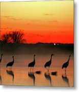 A General View Of The National Park Metal Print