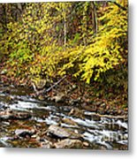 Autumn Elk River Metal Print