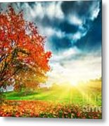 Autumn Fall Landscape In Park Metal Print