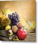 Autumn Fruit Metal Print