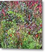 Autumn Meadow Metal Print