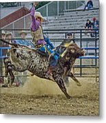 Bareback Bronc Riding Metal Print