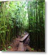 Boardwalk Passing Through Bamboo Trees Metal Print
