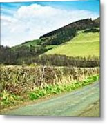 Country Track Metal Print