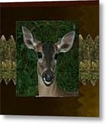 Deer Wild Animal Portrait For Wild Life Fan From Navinjoshi Costa Rica Collection Metal Print