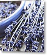Dried Lavender Metal Print