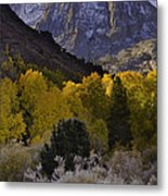 Eastern Sierras In Autumn Metal Print