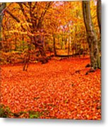 Epping Forest Hrd Version Metal Print