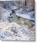 Forest Creek After Winter Storm Metal Print