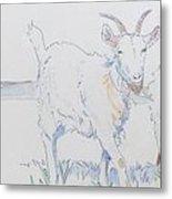 Goat Drawing Metal Print