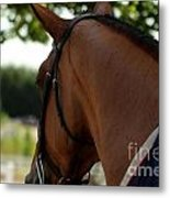 Hunter2 Metal Print