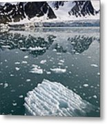 Icebergs Near The Monaco Glacier Metal Print