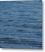 Lake Ripples Metal Print