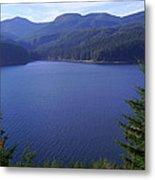 Lakes 1 Metal Print