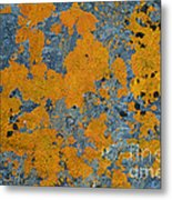Lichened Rocks Metal Print